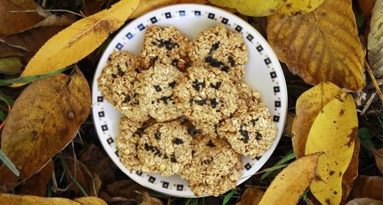 Ovesno-sezamové sušenky